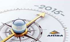 Tus Metas Para El 2015